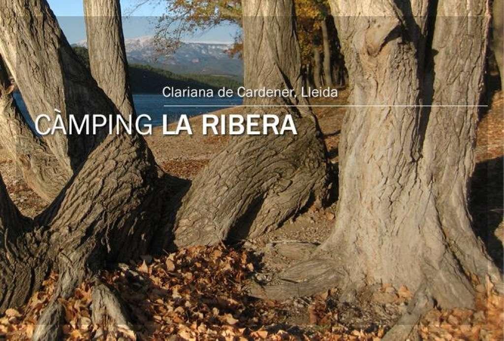 entrono del Camping La Ribera
