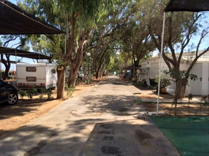 Camping Palm Mar