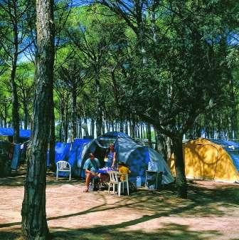 Doñana, un paraíso natural