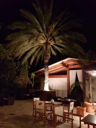 Playa, arroz y Costa Brava: ¡Bienvenidos a Pals!