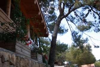 Camping Torre de la Mora