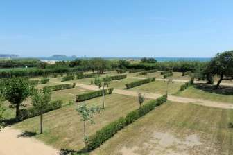 Offer in Bungalow Playa Brava - Bungalow in Girona