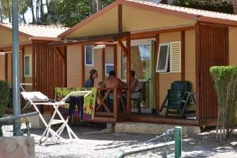 Oferta en el Camping Altomira: SUPER OFERTA SEPTIEMBRE