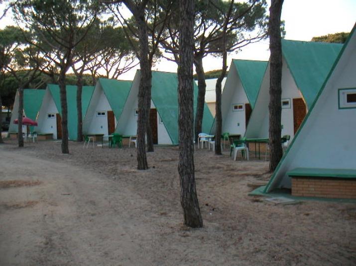 Bungalow tipo: Barracas en el Camping Doñana Playa