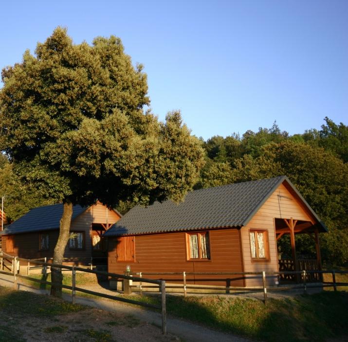 Bungalow tipo: Estandar en el Camping La Vall