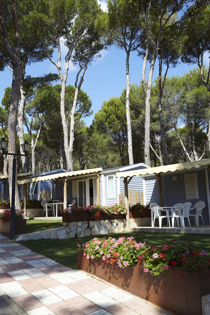 Bungalow tipo: ESTANDAR en el Camping Interpals