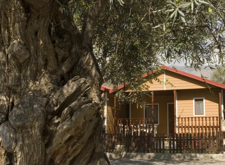 Bungalow tipo: 6 Personas de Madera en el Camping Órgiva