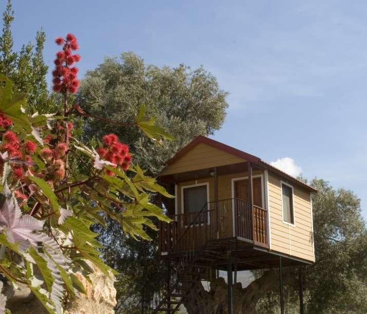 Bungalow tipo: Cabaña Arbol en el Camping Órgiva