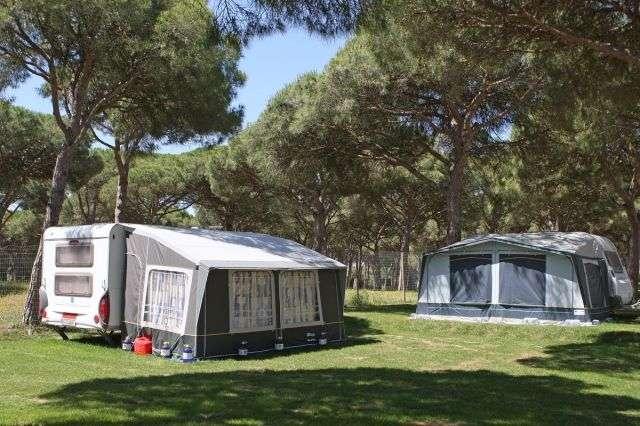 Camping Pinar San José
