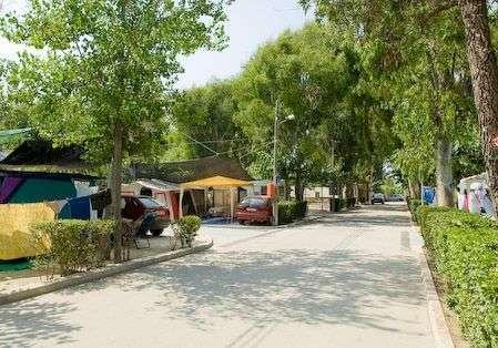 Camping euro camping y bungalows en oliva - Camping en oliva con piscina ...