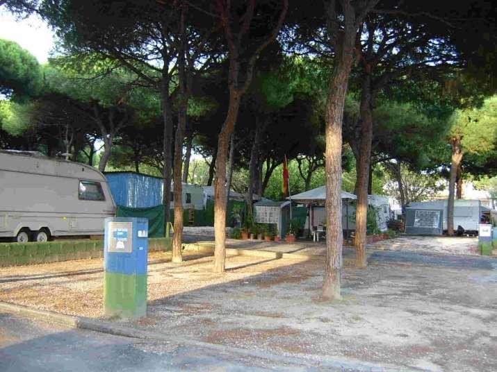 Camping Los Jarales