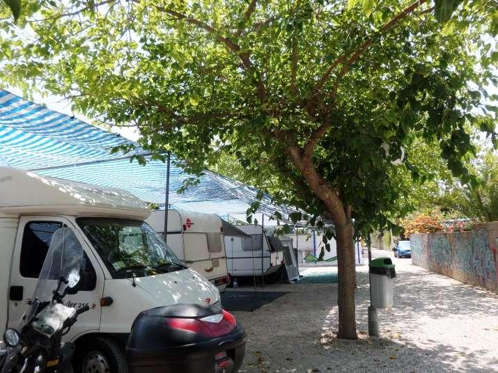 Camping bon sol camping y bungalows en el campello for Camping el jardin en campello