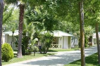Entorno del Camping El Faro